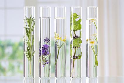 produits-naturels-et-bio-pharmacie-ercan-erquinghem-lys-la-chapelle-d'armentières-armentières-sailly-sur-la-lys-fleurbaix