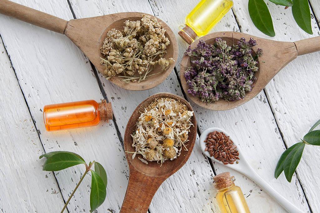 phytotherapie-pharmacie-ercan